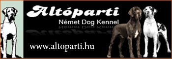 Altóparti kennel